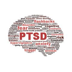 BEHV002 - Understanding Post-Traumatic Stress Disorder